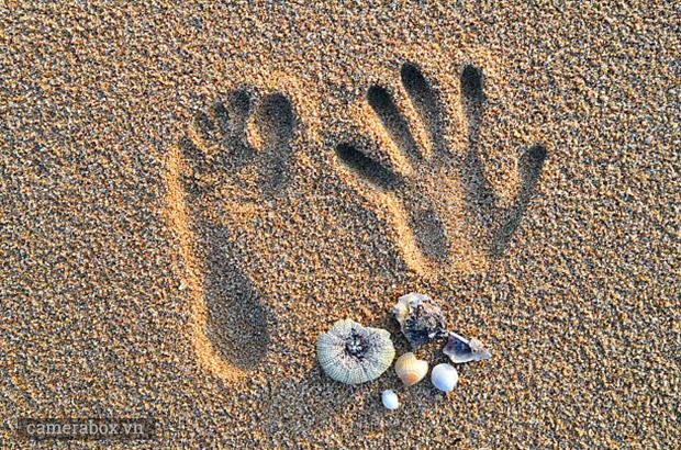 bóng đổ trên cát