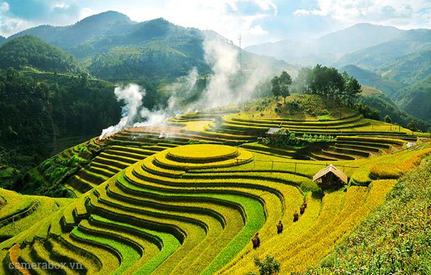 ruộng bậc thang Sapa Việt nam